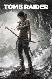256px Tr2011cover